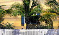 Pickets and Palms - Key West